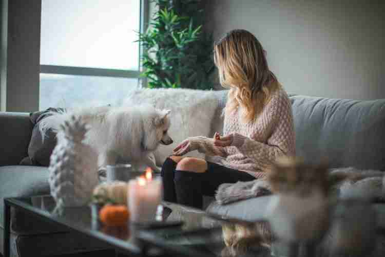 Young woman spending time at home with dog